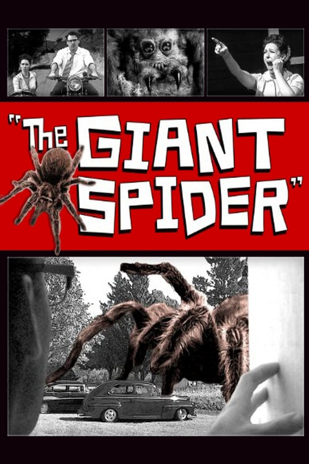 "Poster for the movie ""The Giant Spider"""