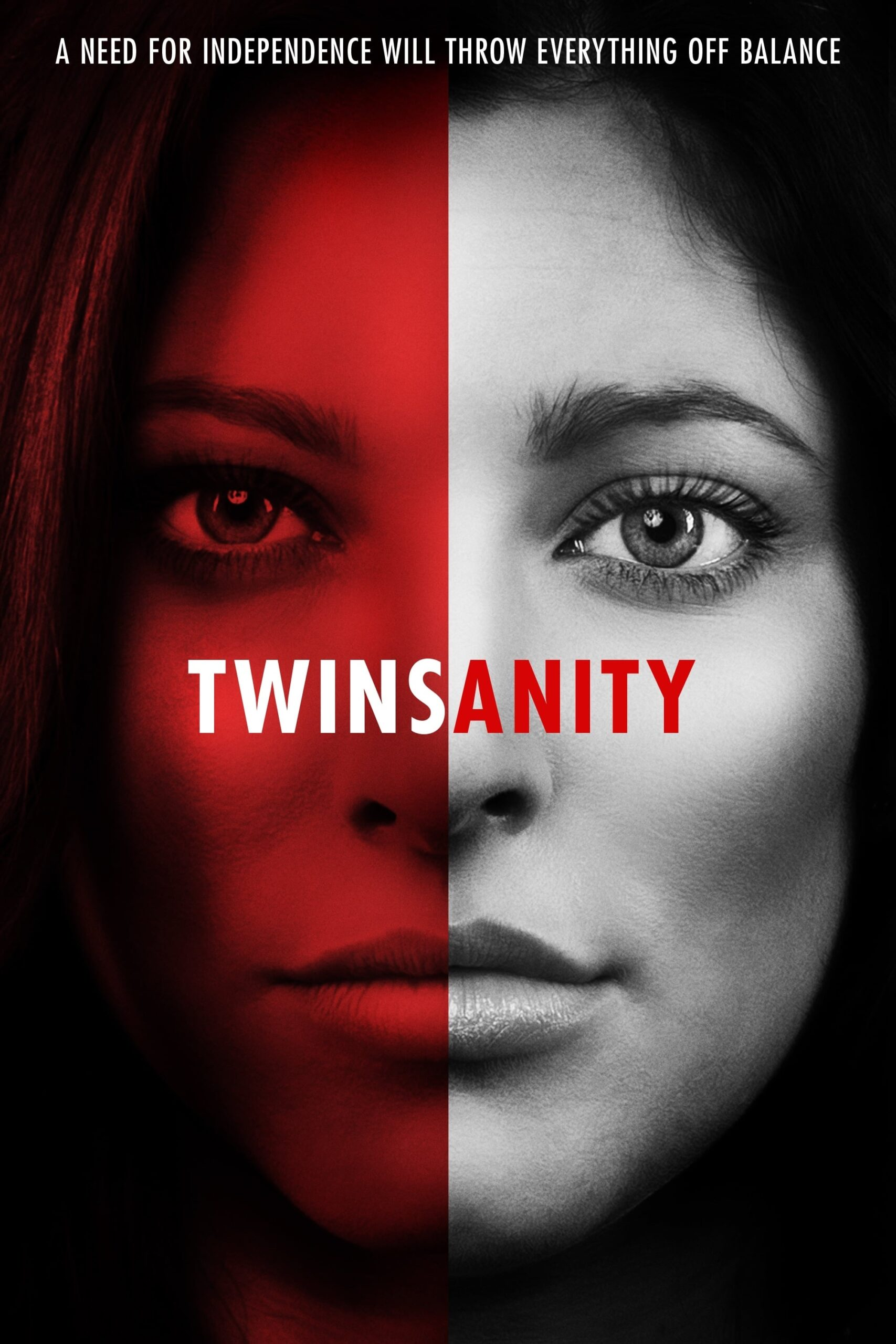 "Poster for the movie ""Twinsanity"""